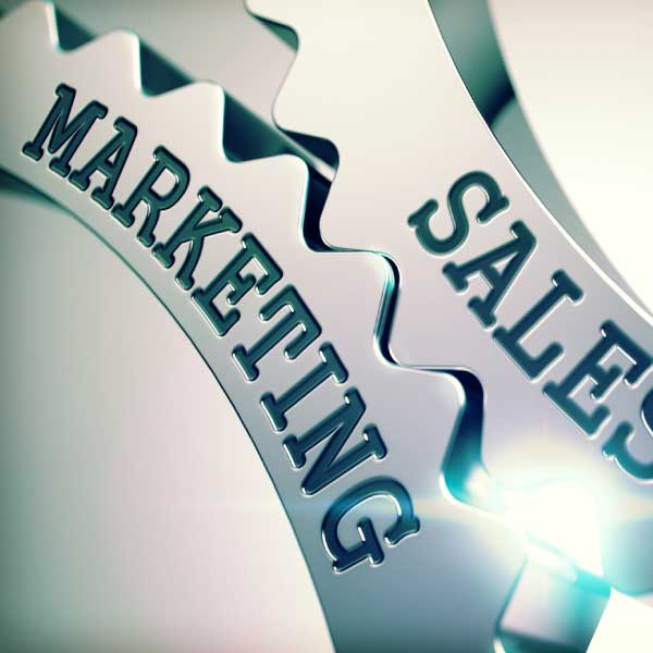 Diploma in sales & Marketing (DSM)